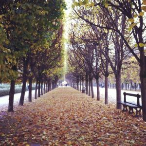 A walk in the Park, Paris